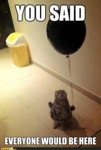 sad-cat-